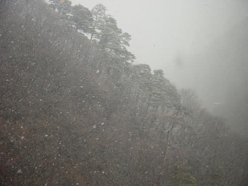 東山温泉裏手の山(会津若松市)